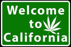 Marijuana Driving in California